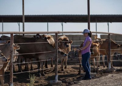 CDQAP Ruminations: Dairy Biosecurity & Your Bottom Line