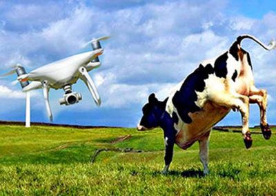 CDQAP Ruminations: Dealing with Trespass and Drones on California Dairies